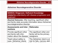 Nursing Care Plans - NANDA 1.1 Screenshot