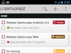 OpenLoopz Pro License 1.0 Screenshot