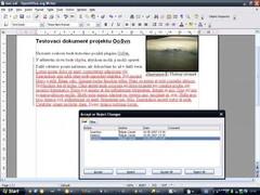 OpenOffice.org Subversion  Screenshot