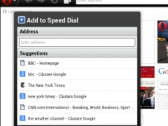 Review Screenshot - Mini Browsers and You