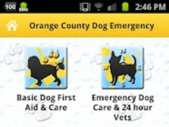 Orange County Dog First Aid 1.0 Screenshot