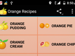 Orange Recipes 1.0 Screenshot