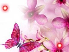 Orchide Pink live wallpaper 1.0 Screenshot