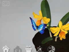OrchidID 1.0 Screenshot