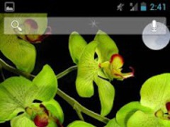 Orchids In Water Pro 1.3 Screenshot