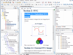 oXygen XML Author 19.0 Screenshot