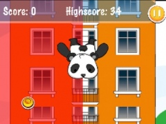 Panda Bungee Run 1.0 Screenshot