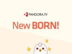 PandoraTV 3.1.2 Screenshot
