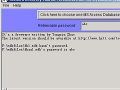 Password Recovery for MS Access 1.0 Screenshot