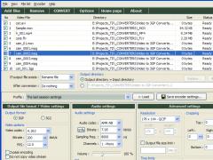 Pazera Free Video to 3GP Converter 1.2 Screenshot
