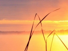 Peaceful Wallpapers HD Backgrounds Images 1.0 Screenshot