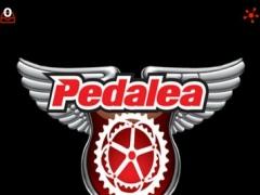 Pedalea Bike Shop 1.1 Screenshot