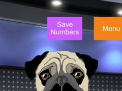 Peg The Mystic Pug 1.2 Screenshot