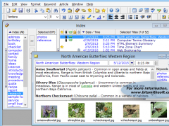 Personal Knowbase 4.1.1 Screenshot