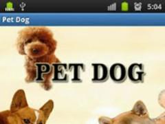 Pet Dog Learning 1.1 Screenshot