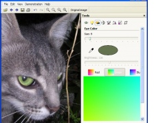 Pet Eye Pilot plug-in 3.0 Screenshot