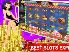 Pets Heroes Bonus-Casino Slot Machine Bonus Game 1.0 Screenshot