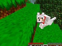 Pets Ideas Minecraft 3.1 Screenshot