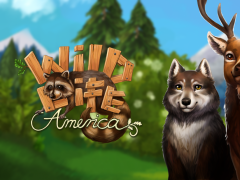 PetWorld - WildLife America Premium 2.1 Screenshot