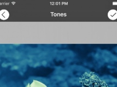 Photoscape - Colors Accent 1.0 Screenshot