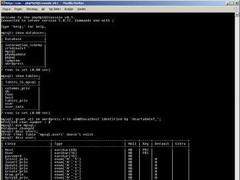 phpMySQLConsole 0.1 Screenshot