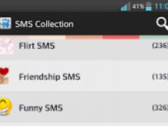 funny flirt sms