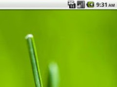 PICTURE TAG 1.0 Screenshot