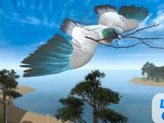Pigeon Bird Survival Simulator 3D 1.1 Screenshot