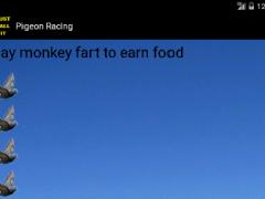 Pigeon Racing 2.0 Screenshot