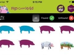 Pigs Gone Wild 1.1 Screenshot