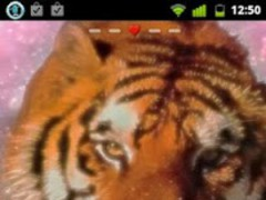 Pink Tiger Theme GO Launcher 7 Screenshot