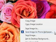 Pix2Fone Browser Extension 2.1 Screenshot