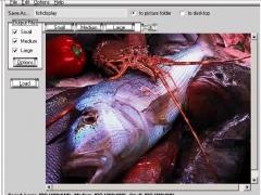 Pixel Grease - Easy Image Editor 2.0 Screenshot