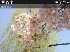Pixel Magnifier 1.5 Screenshot