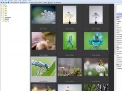 PixiShot (FREE Edition) 2.3.1 Screenshot