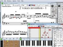 Pizzicato Beginner 3.6 Screenshot