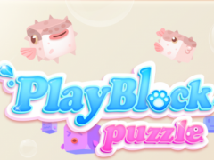 PlayBlockPuzzle 1.0.7 Screenshot