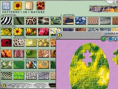Playtonium Jigsaw - Patterns in Nature 1.10 Screenshot
