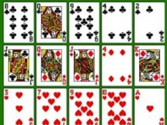 Pokerpatiens 1.2.1 Screenshot
