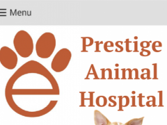 Prestige AH 300000.0.51 Screenshot