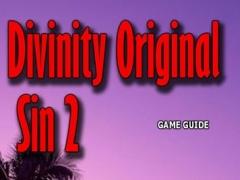 PRO - Divinity: Original Sin 2 Game Version Guide 1.0 Screenshot