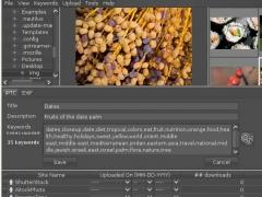 ProStockMaster for Linux 1.5.5 Screenshot