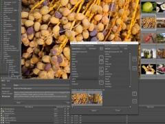 ProStockMaster for Mac Os X 2.0.5 Screenshot