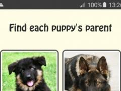 Puppy & Parent Breed Match 1.1 Screenshot