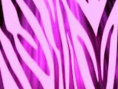 Purple Zebra Print LWP 4 Screenshot