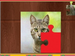 Puzzle - Cats 1.0 Screenshot
