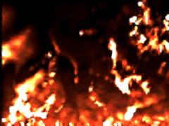 Pyro Live PRO 1.4 Screenshot