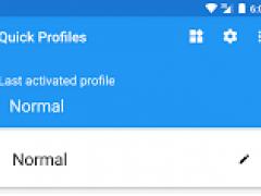 Quick Profiles 1.9.9 Screenshot
