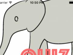 quiz Animals 1.0.0 Screenshot