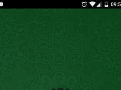Quran mp3 Mishary ALAfasy 1.0 Screenshot